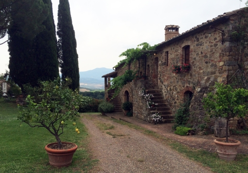 Montalcino Sesti Argiano