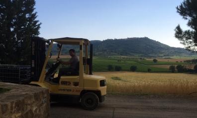 Montalcino Siro Pacenti view